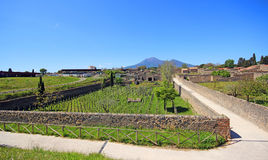 Ruins of Ancient Pompeii. In Italy Stock Images