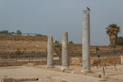 Ruins of the ancient Roman city of Caesarea, Israel Stock Images