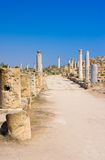Ruins of ancient Salamis city. Famagusta district. Cyprus Stock Photography
