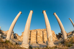 Ruins of Ancient Salamis. Famagusta District, Cyprus Royalty Free Stock Image
