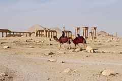 Syria, Palmyra; February 25, 2011- Ruins of the ancient Semitic city of Palmyra shortly before the war, 2011. Ruins of the ancient Semitic city of Palmyra on Royalty Free Stock Photo