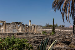 Ruins of ancient synagogue in Capernaum - Israel Royalty Free Stock Photos