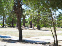 Ruins of the ancient temple columns under green trees. In Hierapolis Royalty Free Stock Images