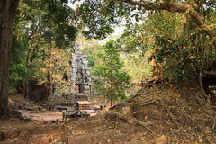 Ruins of ancient temple lost in jungle Royalty Free Stock Photo