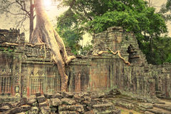 Ruins of ancient temple lost in jungle Stock Photo