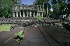 Ruins of Angkor. Ruins of ancient Angkor in summer time Stock Image
