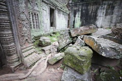 Ruins at angkor in cambodia Stock Images