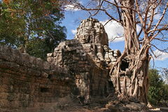 Ruins of Angkor, Siem Reap Royalty Free Stock Photos