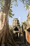 Ruins at Angkor Wat. A shot from inside Angkor Wat Stock Photos
