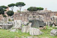 Ruins of antique Roman forum in Rome. Ruins, stones and architecture details of Roman forum in Rome, Italy Royalty Free Stock Photo