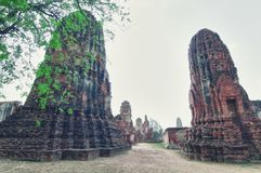 Ruins from Ayutthaya Stock Image