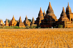 Ruins of Bagan- Burma (Myanmar) Stock Photo