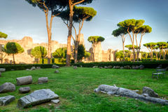 The ruins of the Baths of Caracalla in Rome Royalty Free Stock Photos