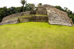Ruins in Belize Royalty Free Stock Photo