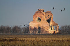 The ruins of the Benedictine monastery of Araca Stock Images