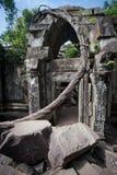 Ruins of Beng Mealea, Angkor, Cambodia Stock Image