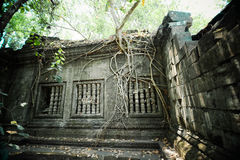 Ruins of Beng Mealea Royalty Free Stock Image