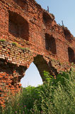 Ruins of Brandenburg castle in Ushakovo Stock Photos