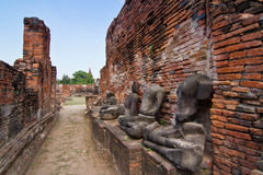 Ruins of buddha statue and temple Stock Photography