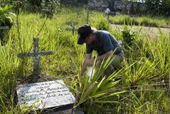 Ruins of the Caballococha cemetery in the Peruvian jungle. royalty free stock photos