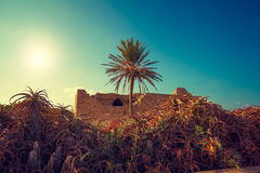 Ruins of Caesarea fortress Royalty Free Stock Photos