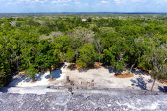 Ruins of Calakmul in Campeche, Mexico. View ruins of Calakmul in Campeche, Mexico royalty free stock photography