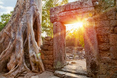 Ruins of Cambodian temple Royalty Free Stock Image