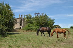 Ruins in Canale Monterano Royalty Free Stock Photo