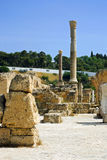 The Ruins Of the Carthage Royalty Free Stock Photography