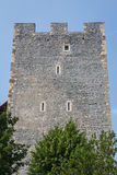 Ruins of the castle in Celje Stock Image