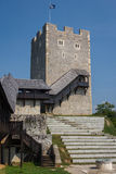 Ruins of the castle in Celje Royalty Free Stock Photo