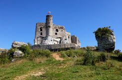 Ruins of the castle in Mirow Royalty Free Stock Photography