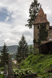 Ruins. Castle Ruins in Romania Royalty Free Stock Images