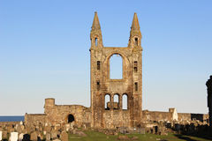 Ruins of Cathedral of St Andrew, St Andrews, Fife Stock Photography