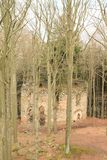 The ruins of the chapel of St. Mary Magdalene. In forest on hill Small Blanik in Czech Republic, Europe stock images