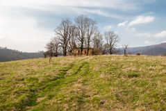 Ruins of a church. Ruins of a small orthodox church in Krywe, Poland Royalty Free Stock Photos