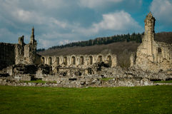 Ruins of Cistercian abbey. Ancient stone ruins of a Medieval Cistercian Abbey Royalty Free Stock Image