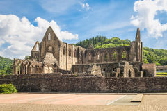 Ruins of cistercian monastery Tintern. View of ruins of cistercian monastery Tintern in Wales on a sunny day Stock Photos