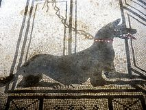 Mosaic dog guarding the Villa entrance in the once buried Roman city of Pompeii south of Naples under the shadow of Mount Vesuvius