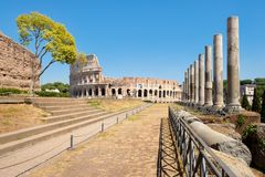 The ruins of the Colosseum and columns of the temple of Venus in. Rome Royalty Free Stock Photo