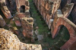 Inside the ruins from the Colosseum - landmark attraction in Rome, Italy Royalty Free Stock Photo