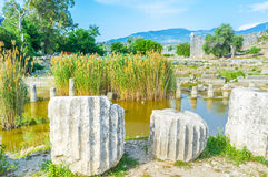 The ruins of columns. The ruins of ancient temples of Letoon nowasays flooded and overgrown with reed, Turkey Stock Photos