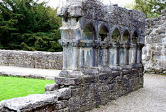 Ruins of Cong Castle, Ireland. November 2007 Stock Image