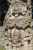 Maya Stela in Copan. Stelae are monuments found in the Maya civilization of ancient Mesoamerica. Copan,Honduras Stock Photography