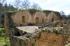 Ruins of crusaders fortress. En Hemed (Aqua Bella) National Park, Israel Royalty Free Stock Images