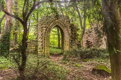 Ruins deep in the forest with sunlight.  Stock Photography