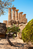 Ruins of Ercole temple Royalty Free Stock Photo