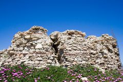 Ruins and Flowers. Runied wall with pink flowers beneath stock images