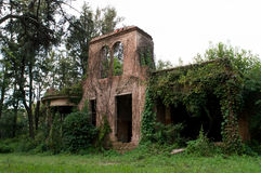 Ruins. At the forest Stock Photography