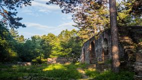 Ruins in the Forest with Beautiful Light. Vibrant time-lapse of ruins within nature; Trees, clouds and a taste of sunlight stock video